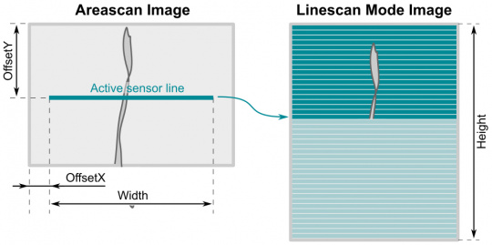 Configuring the image geometry for the line scan mode